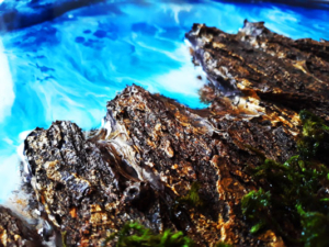 دریای رزینی